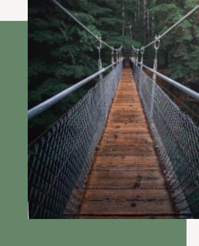 Hängende Brücke in Dschungel